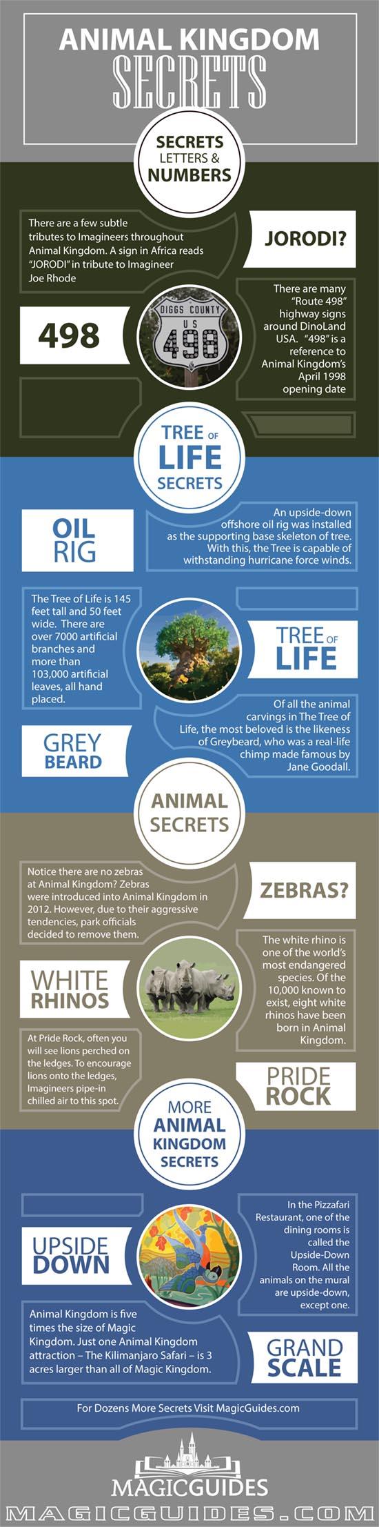 animal kingdom secrets