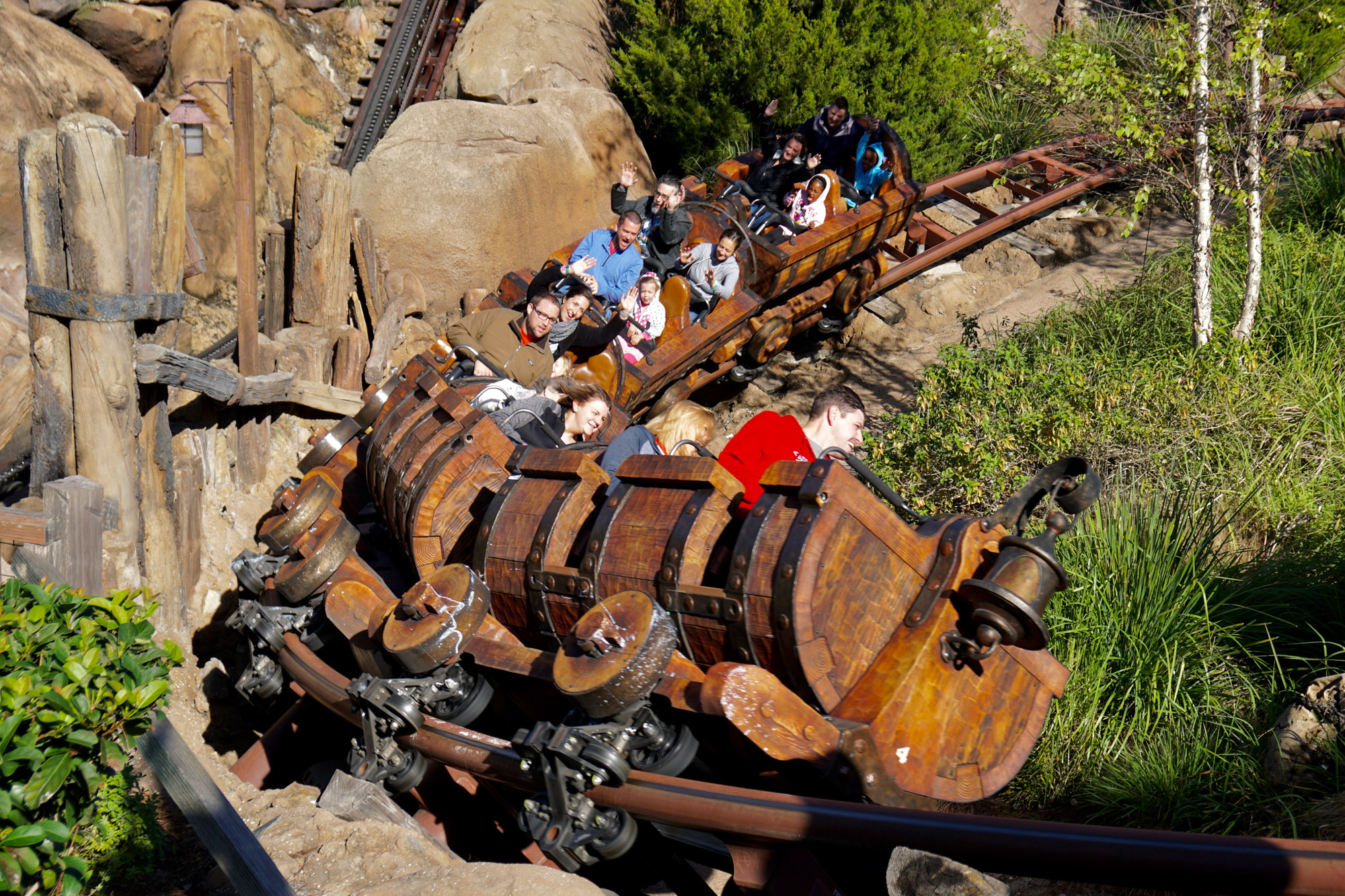 roller coasters at disneyland and disney world