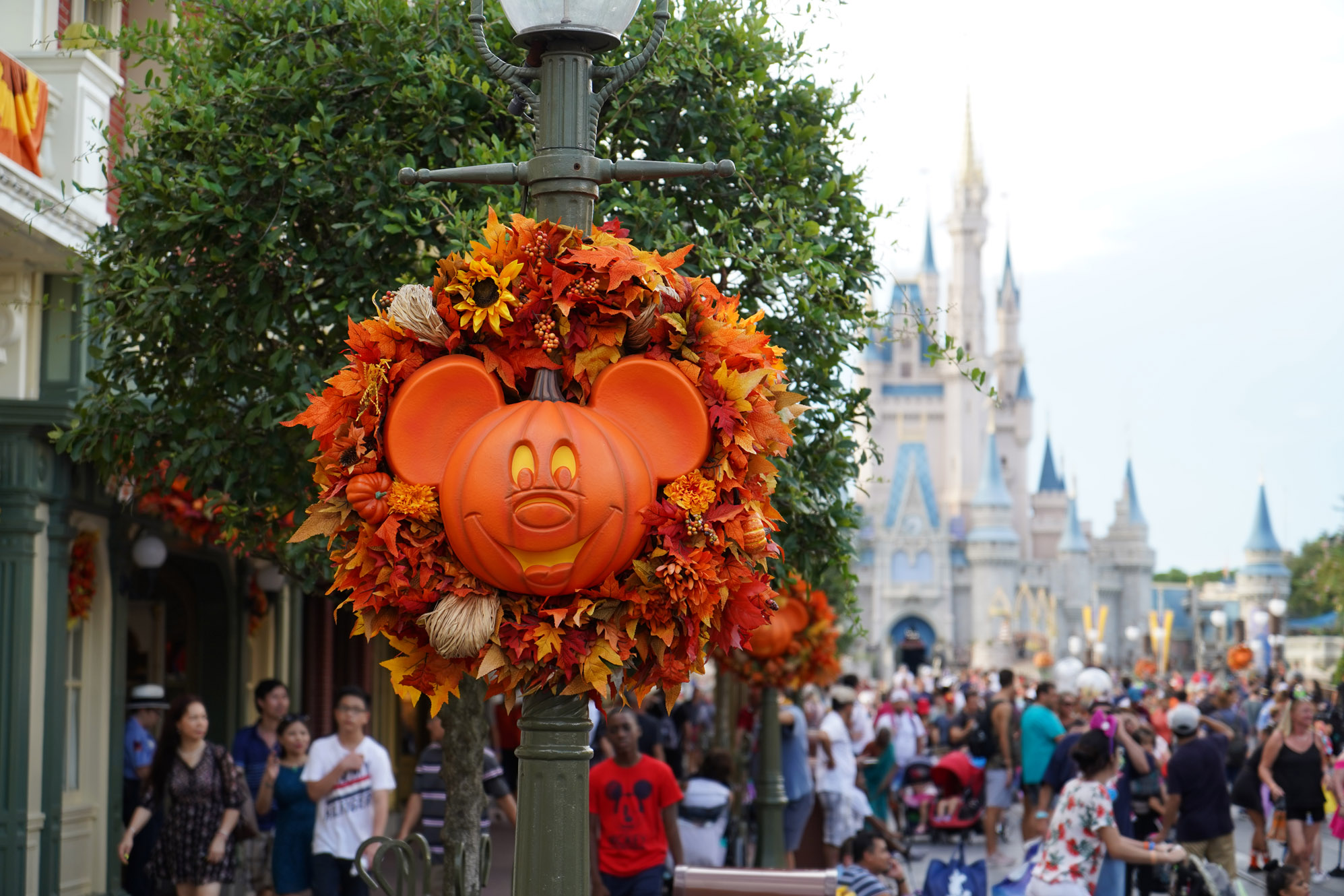 Festivals at Disney World