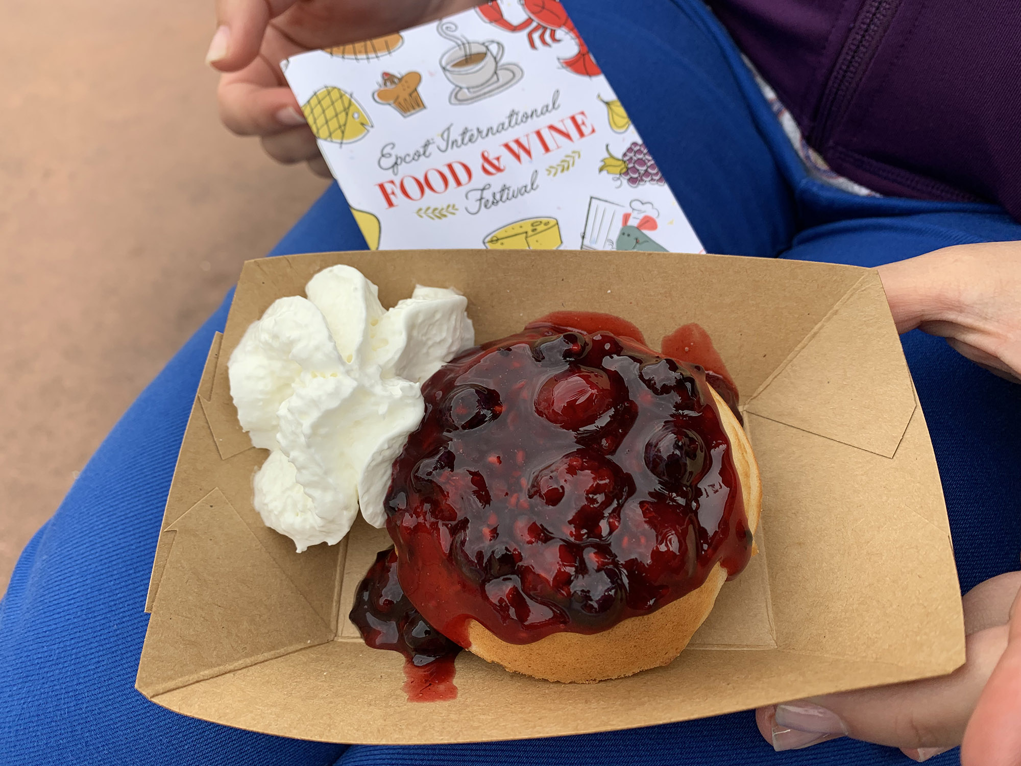 Reviews of Epcot Food and Wine Festival