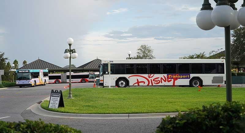 Buses at Disney World