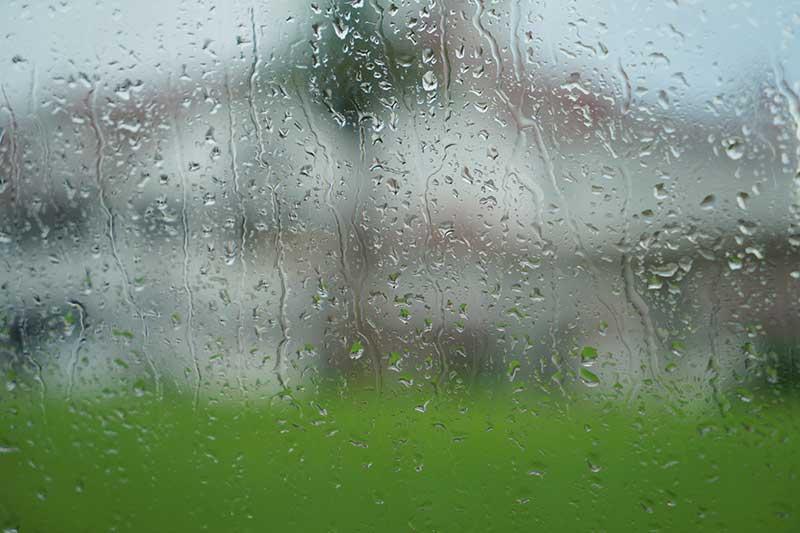 Rain on a window at Disney World