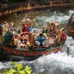 How To Plan a School Trip to Disney World
