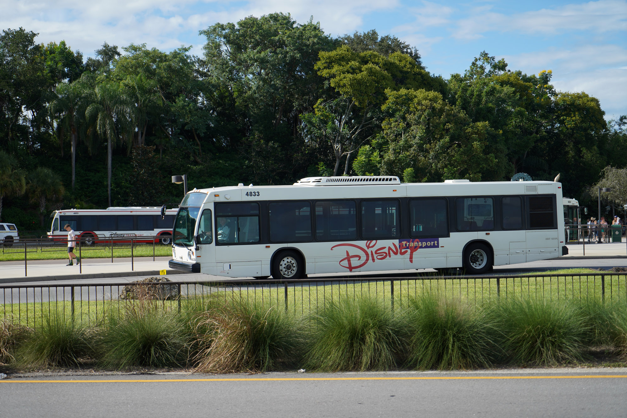 Disney World transportation from the airport