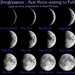 Phases Of The Moon Diagram To Label Mk4 Golf Brake Light Switch Wiring Lunar Kinetic Energy Elsavadorla
