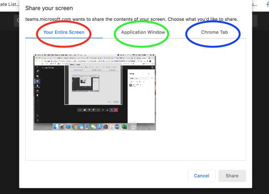 Screenshare Options Window