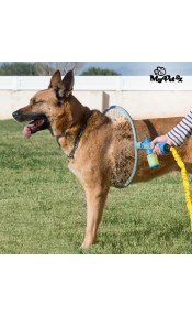 Κρίκος Πλυσίματος για Σκύλους My Pet Wash A'Hoop