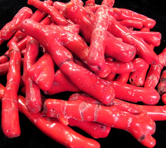 Beautiful Red Bamboo Coral Pieces for Sale