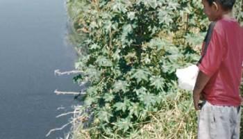 Niño frente al Río Santiago