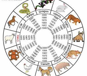 1993: Έτος από τα οποία το ζώο στο ανατολικό ημερολόγιο