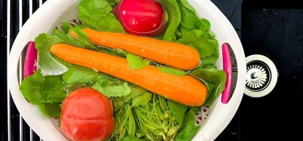 Tips Membersihkan Sayuran Dari Ulat