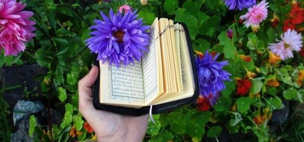 Kumpulan Doa Muslim Untuk Mendoakan Orang Tua