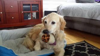 Maddy with sister's ball