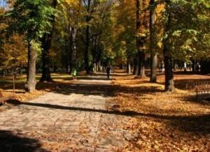 chisinau-parc