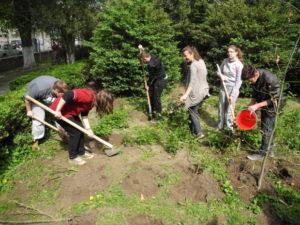 plantare pomi. elevi