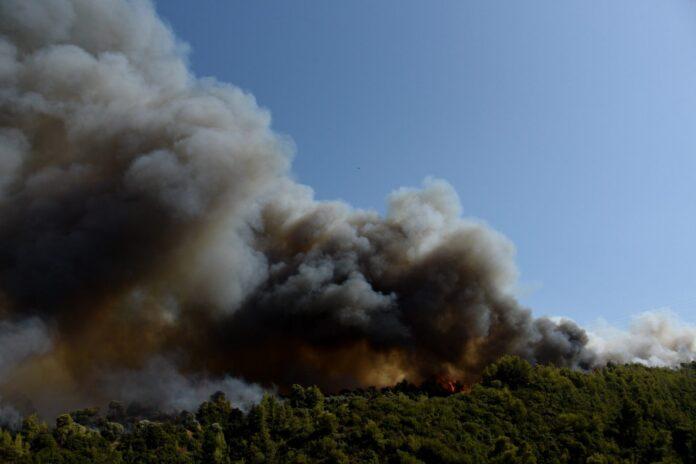 Συγκλονιστικές εικόνες από το πύρινο μέτωπο στην Αχαΐα – Κάηκαν σπίτια