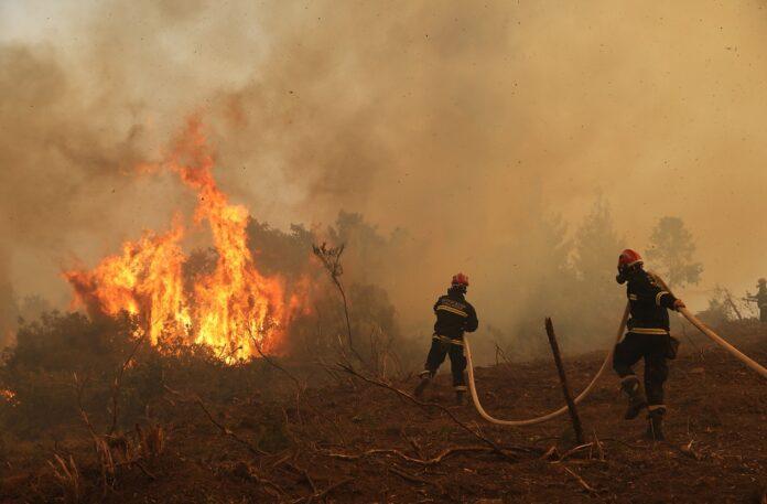Η καμένη έκταση ξεπέρασε φέτος τα 930