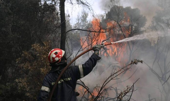 «Καμπανάκι» – Ζερεφού: Kίνδυνος για πολύ μεγάλες φωτιές μετά τον καύσωνα – Επικίνδυνος ο Αύγουστος