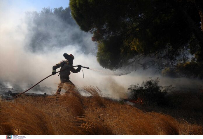 Φωτιά στην Κάρυστο: Τρεις «ύποπτες» πυρκαγιές δείχνουν εμπρησμό