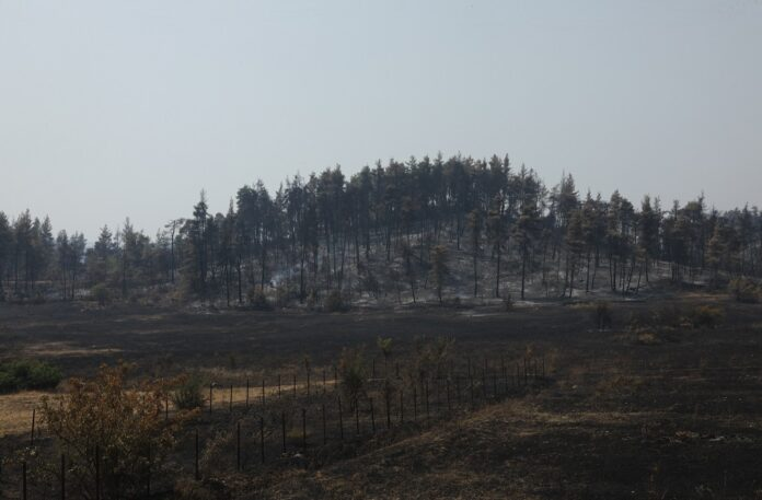 Φωτιές – Ενεργό το μέτωπο στη Γορτυνία, σηκώθηκαν τα εναέρια μέσα