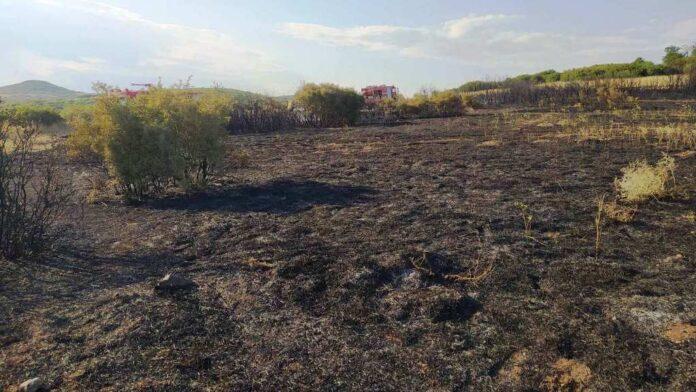 Κάηκαν καλαμιές και πουρνάρια στο Αερινό