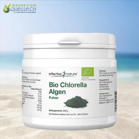 Chlorella Algen Pulver kaufen BIO