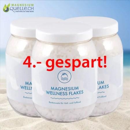 Magnesium Flakes 3er Set 1000 g kaufen