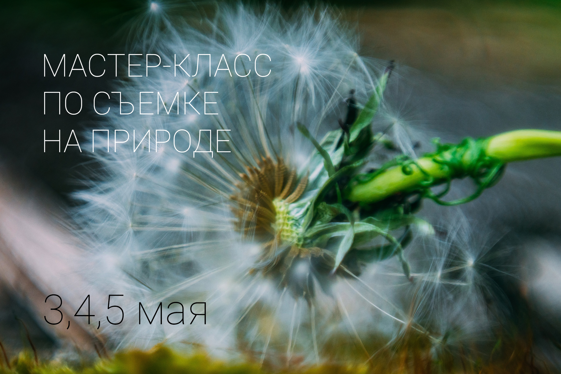 мастер-класс макро Екатеринбург