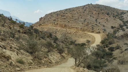 pusta droga doAl Qannah Plateau