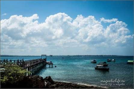 Prison Island żółwie iniewolnictwo. Molo naPrison Island