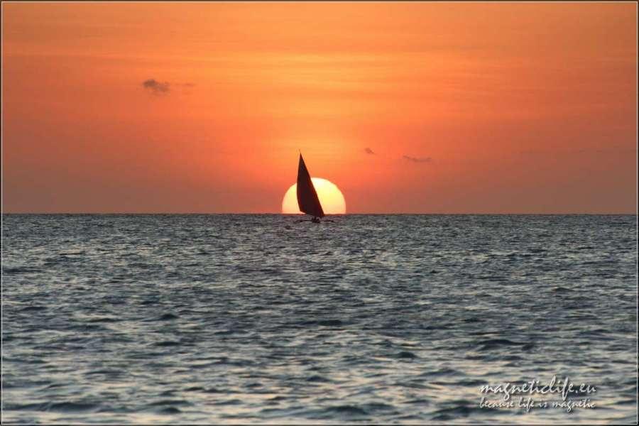 Zachodnie wybrzeże Zanzibaru. Samotny żagiel