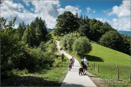 Nowa ścieżka pieszo rowerowa