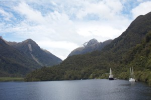 Doubtful sound sailboats