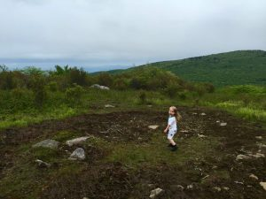 Joy in Grayson Highlands