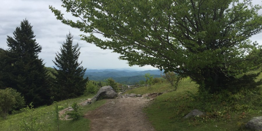 Path through Grayson Highlands