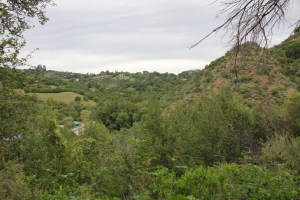 View from Hostel Trail