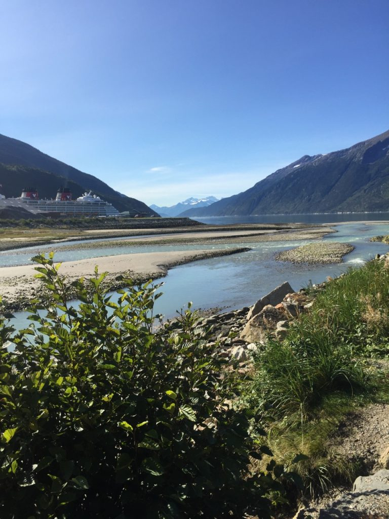 View of the Skagway River