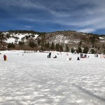 Free Sledding in Tahoe: Mount Rose