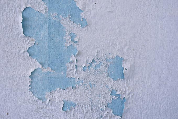 La lavabile max meyer pittura murale idropittura per interni bianca. Le 7 Migliori Pitture Antimuffa 2021 Offerte Online Opinioni Prezzi