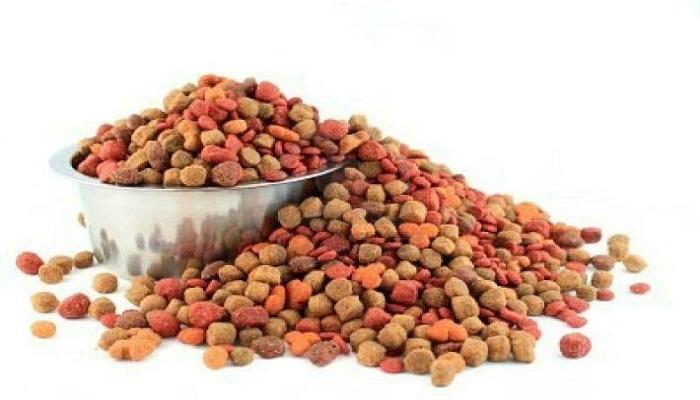 Comida seca para perros
