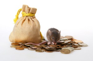 Little mouse sitting on a heap of coins