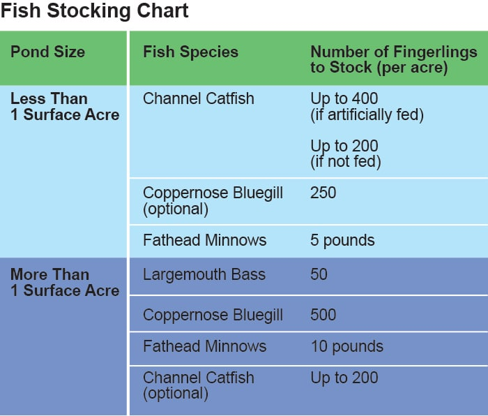 Channel Catfish Size Chart Reviewwalls
