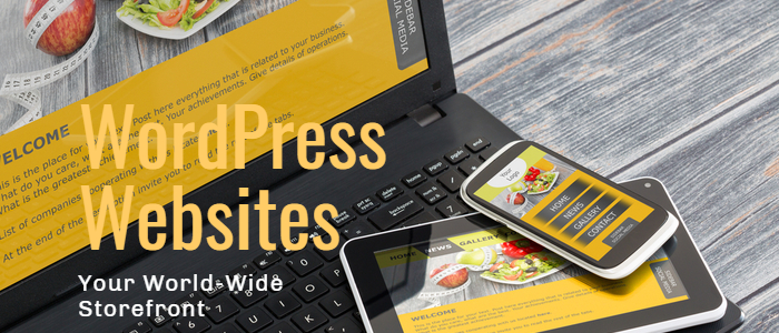 Wordpress Websites SMB