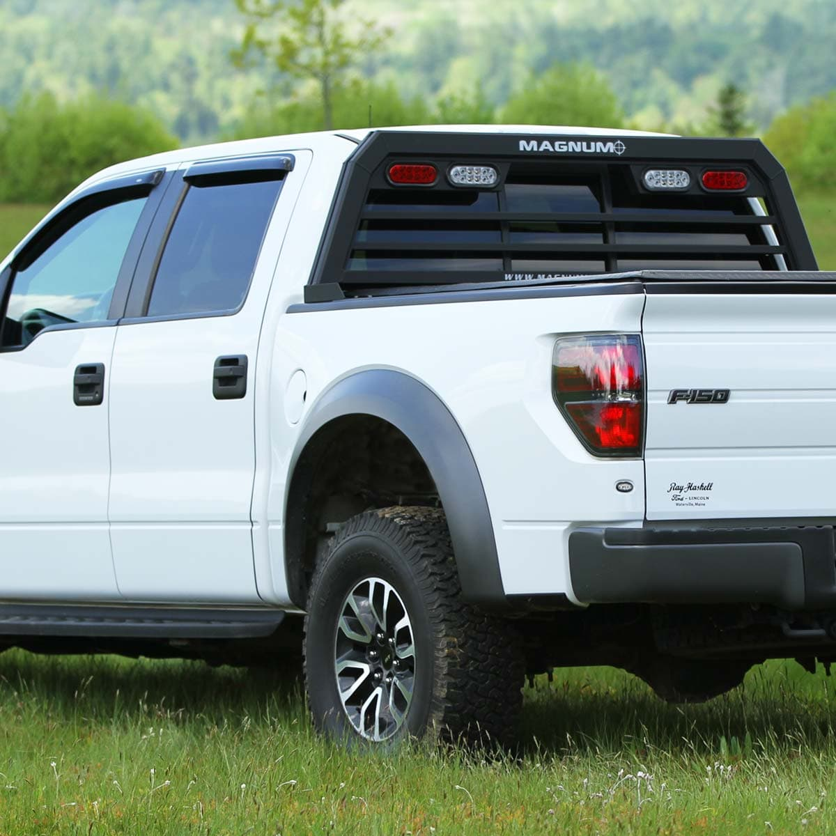hight resolution of  ford f 150 truck rack