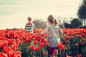 チューリップ畑と子供達