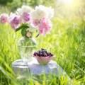 花とサクランボ