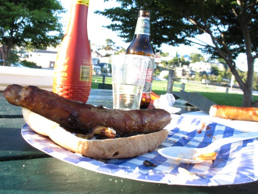 BBQ Food (photo by markheseltine)