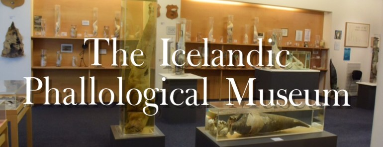 Iceland's Penis Museum (The Icelandic Phallological Museum) - Mags On The Move