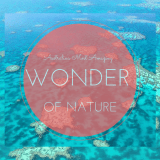 Australia's Most Amazing Wonder of Nature
