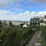 Montmartre's Secret Vineyard